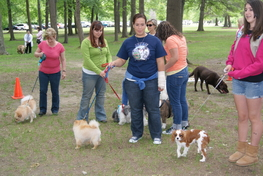 Animal Rescue Happy Tails Animal Rescue News And Events